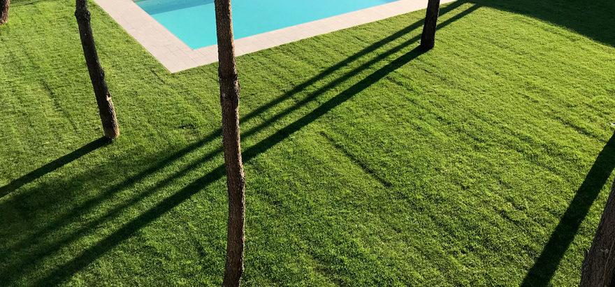 apartamentos-areas-jardines-pinos